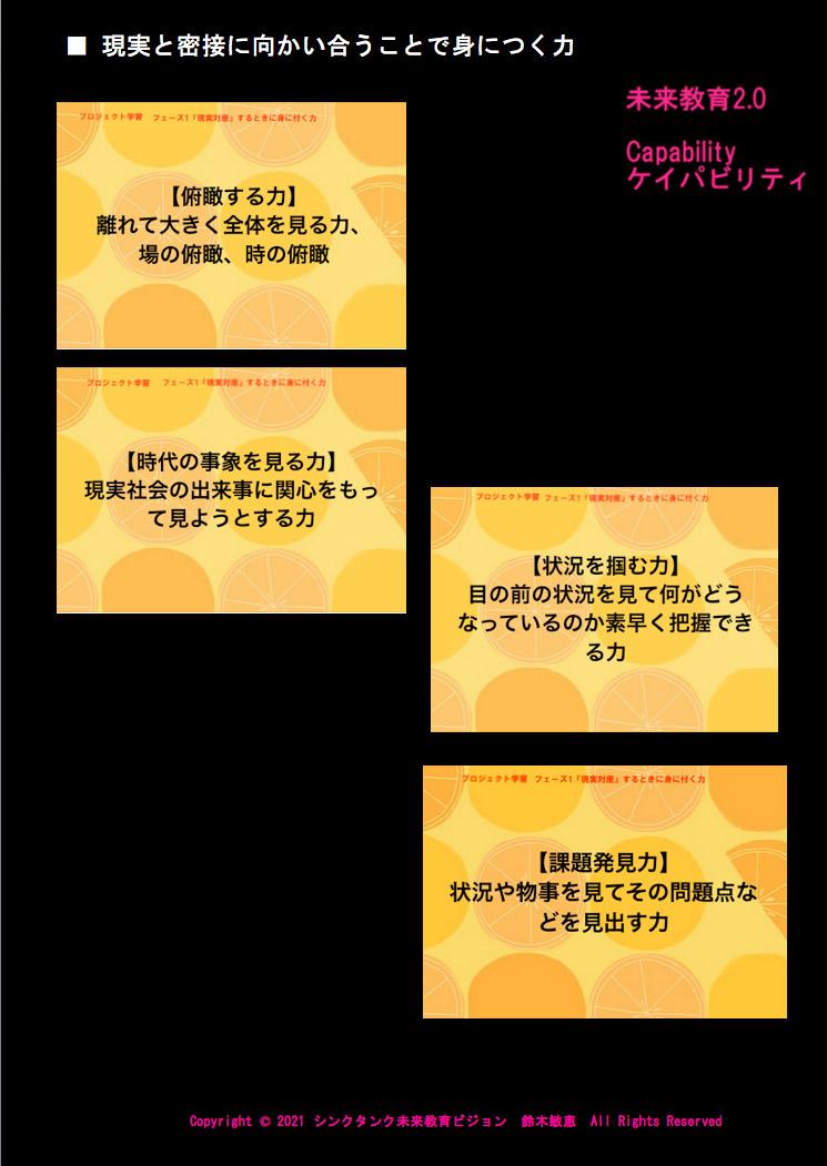 ケイパビリティ・パネル(2)